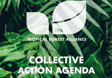 Collective Action Agenda Brochure