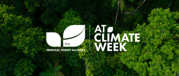 Tropical Forest Alliance Brings Forest-Positive Collective Action to Climate Week 2020