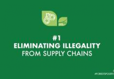 Joining the dots through the Supply Chain Transparency Network