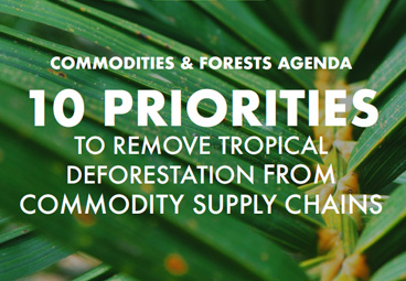 Commodities and Forests Agenda 2020