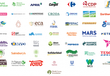 Collective Position Paper on EU Action to Protect and Restore the World's Forests