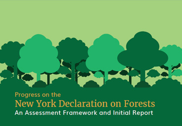 Progress on the NYDF – An Assessment Framework and Initial Report
