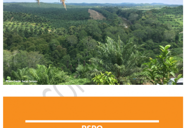 RSPO Jurisdictional Approach for Certification: Certification System Document (Second Draft)