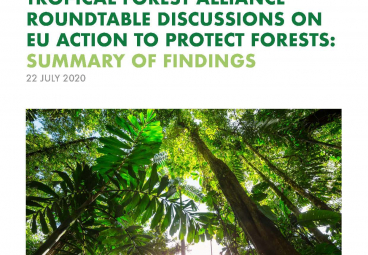 Summary of Findings - TFA Roundtable Discussions on EU Action to Protect Forests