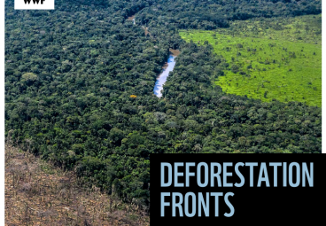 DEFORESTATION FRONTS: Drivers And Responses In A Changing World