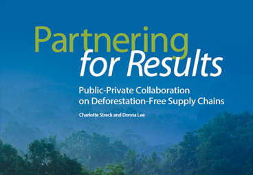 Partnering for Results: Public-Private Collaboration on Deforestation-Free Supply Chain