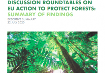 Executive Summary - TFA Roundtable Discussions on EU Action to Protect Forests