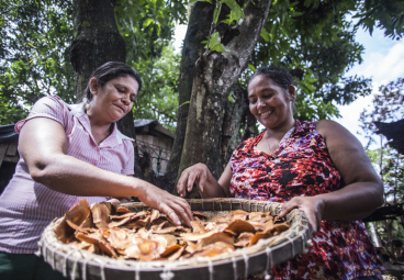 The Power of Women and Indigenous Peoples to Achieve Better Growth with Forests
