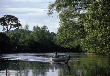 How the Tolo River People of Colombia Harnessed Carbon Finance to Save Their Rainforest