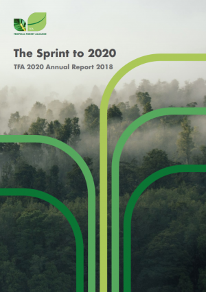 Sprint to 2020 Annual Report 2018