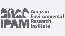 Amazon Environmental Research Institute (IPAM)