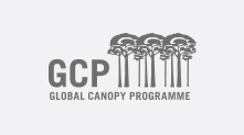 Global Canopy Programme